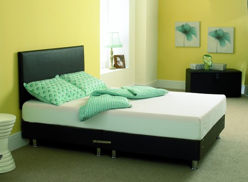 PVC Leather Bed